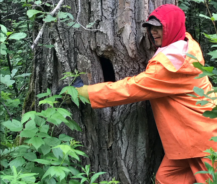 Youth expresses his love for a 150-year-old tree